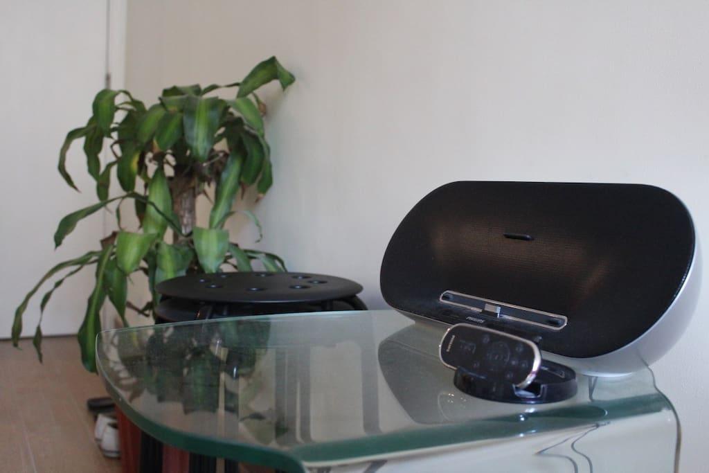 Wireless music (bluetooth)