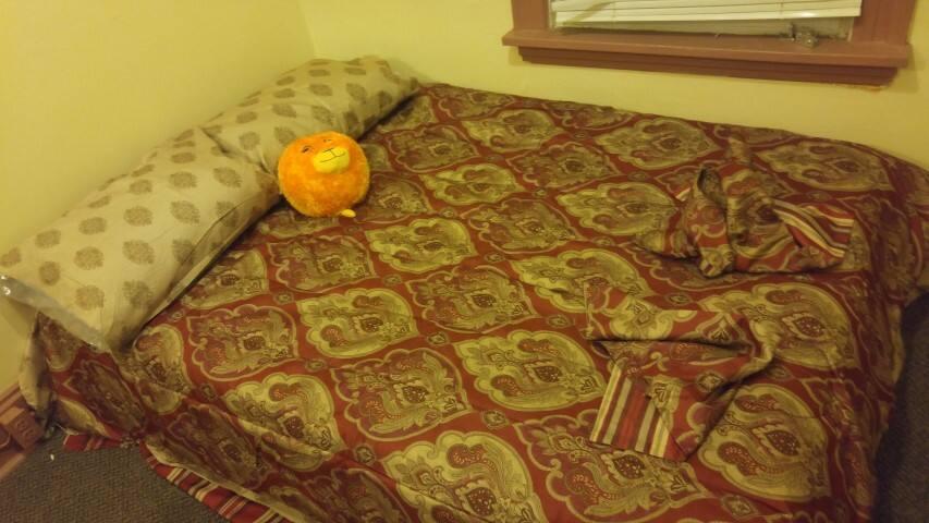 Nice Furnished Small Room near CMU, UPITT - Pittsburgh - House