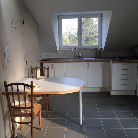 studio très lumineux  et très calme à Woluwe - Woluwe-Saint-Lambert - Apartemen