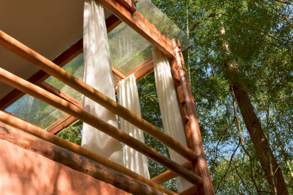 房间-倚风,从竹林往看