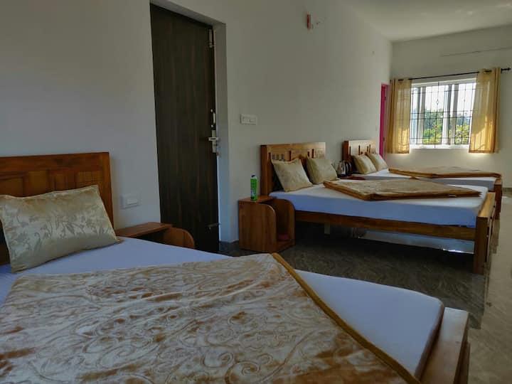 Mithun Hill View (Domitary Room)