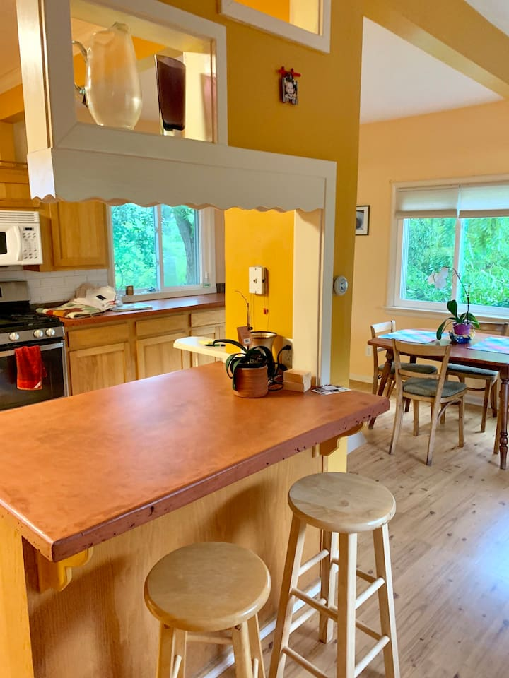 Large Kitchen with concrete counter tops