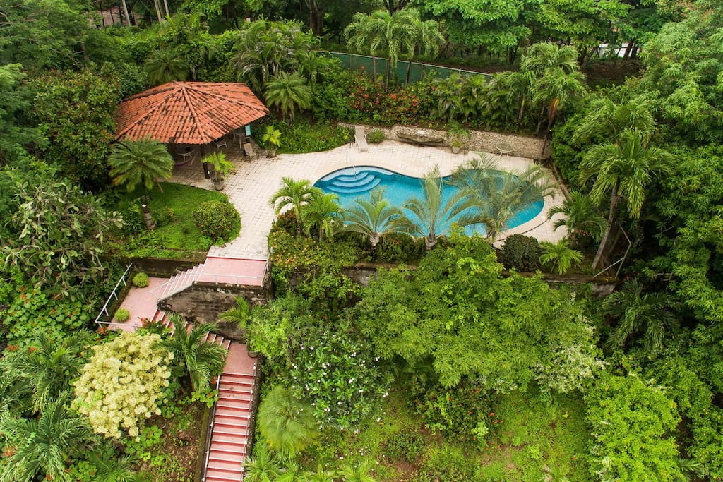 Large shared swimming pool, lush gardens, rancho with hammocks