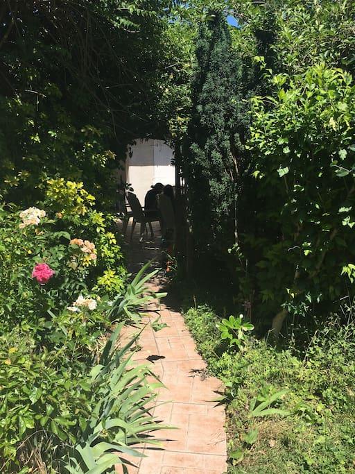 Le chemin jusqu'à l'entrée de l'appartement - path to the studio through the patio