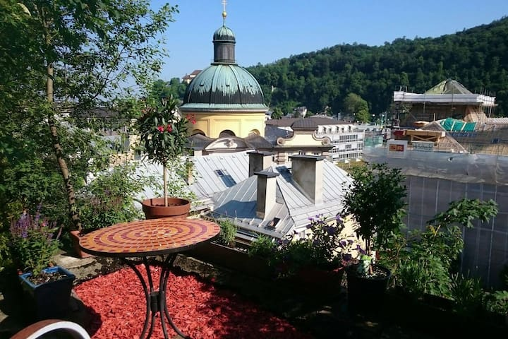 Lovely apartment with city garden - Salzburg - Lägenhet