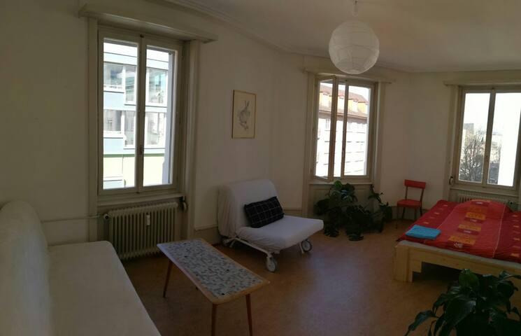 Spacious apartment in basel city - Βασιλεία - Διαμέρισμα