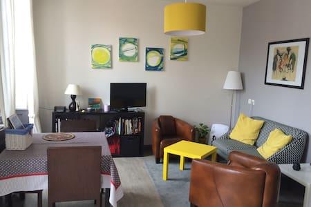Bel appartement cocooning en centre ville de Riom - Riom