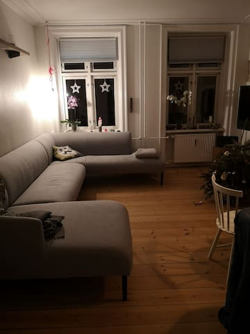 Big room with 2 beds in central Copenhagen