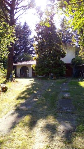 VILLA IMMERSA NEL VERDE, tranquillità e pace - San Romano - Вилла