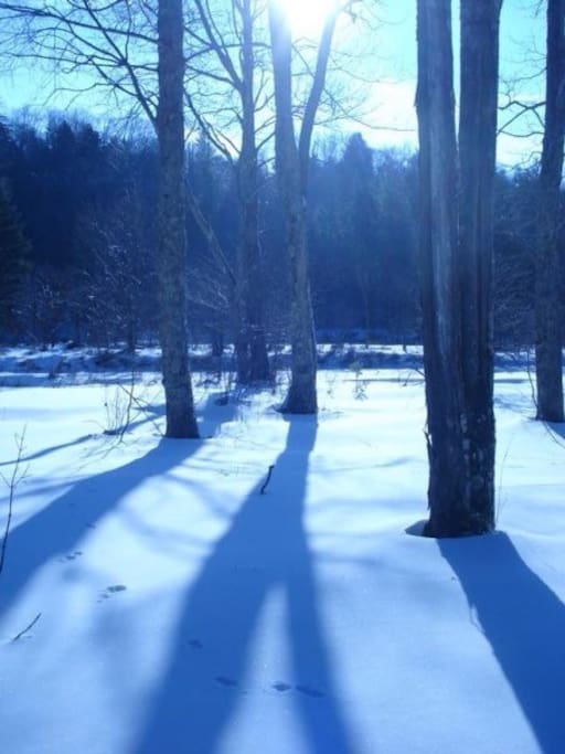shadows stretch out from trees lining the banks of the West Canada Creek.