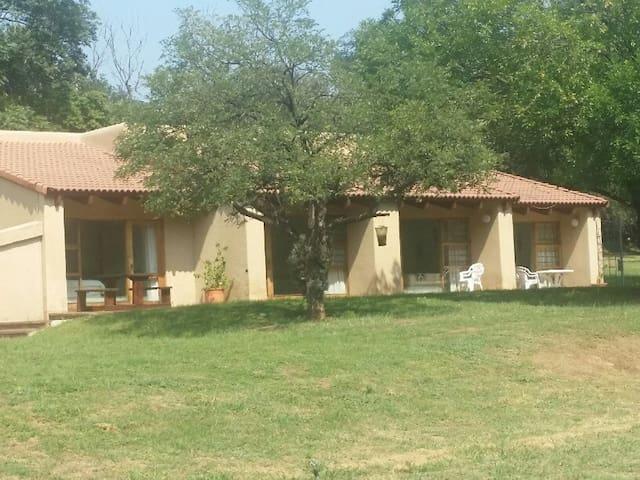 Naledi-Africa