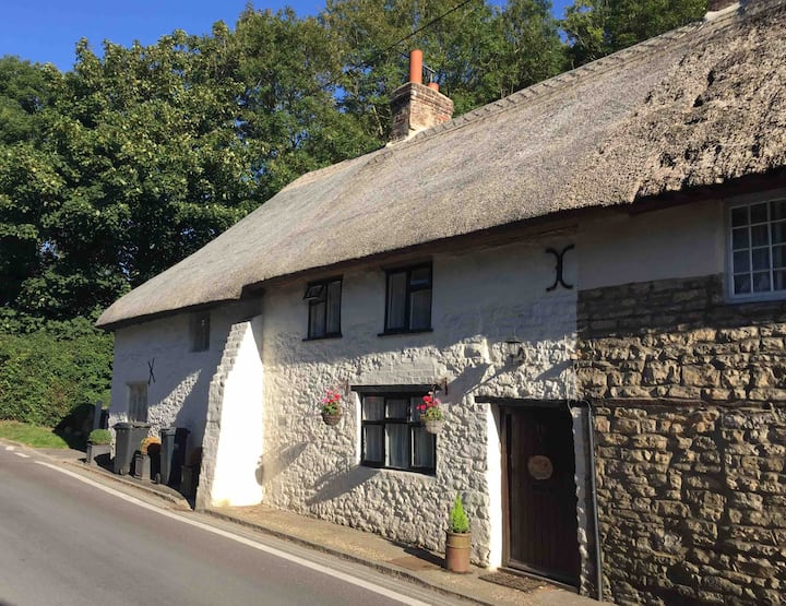 Nut Cottage, close to stunning coastline and pub.