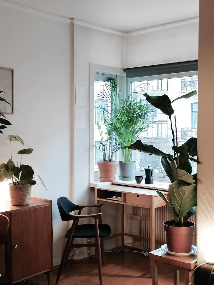 Cosy studio in central Oslo