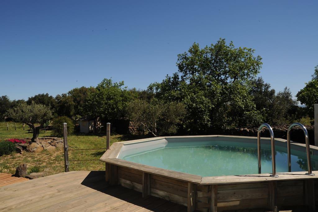 Villa avec piscine dans un cadre naturel houses for rent for Piscine clermont l herault horaires