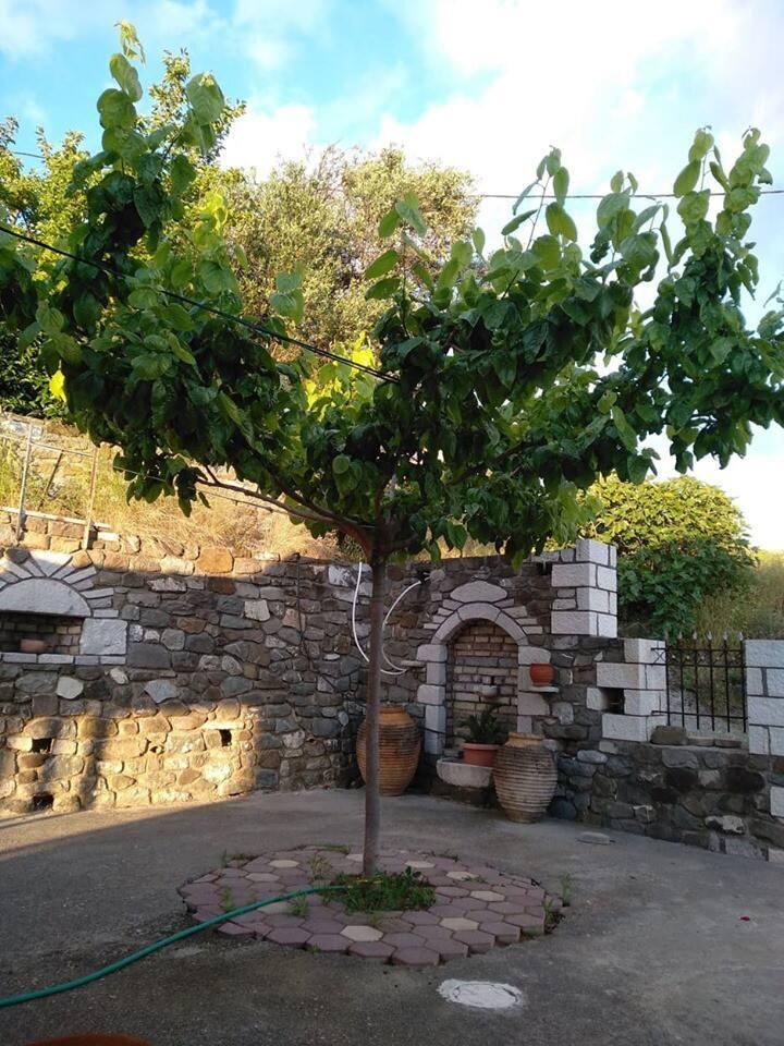 Eleni House in Desilla Messinia (near Kalamata)