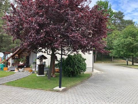 Entspannen und  der Wald vor der Tür ( 68m² )