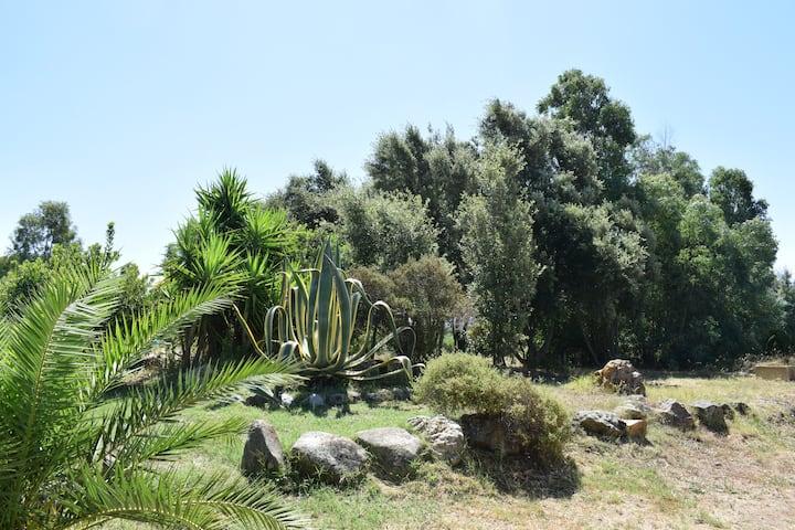 NEW CoZy ViLLa in the CountrySide S/W Sardinia