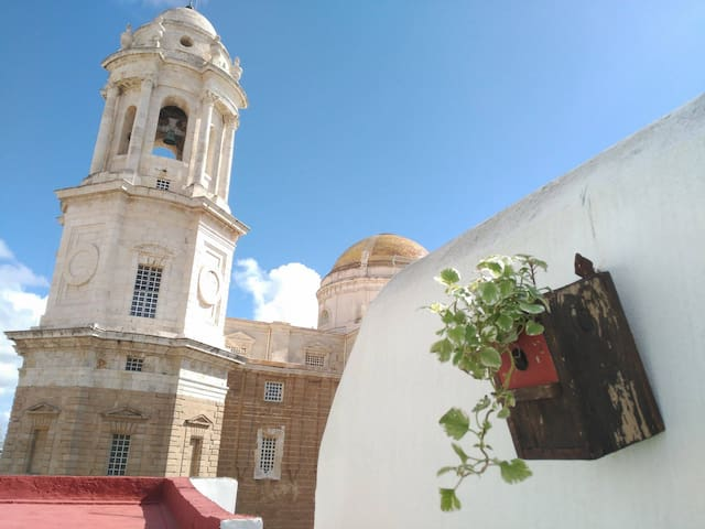 Private sunny terrace overlooking Cadiz cathedral - Cádiz - Apartament