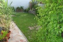 Blick in den kleinen Garten
