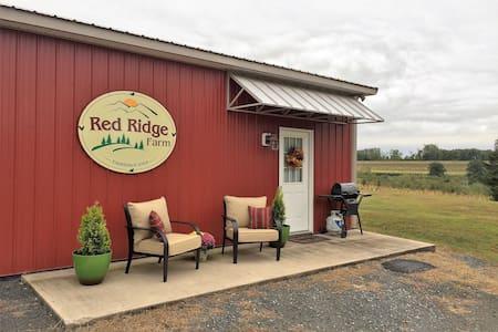 Red Ridge Farm apt. on 35 acres near Hawk Mtn. - Orwigsburg - Wohnung