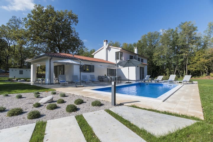 Modern Design Villa (8+0) - Općina Sveta Nedelja - House