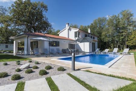 Modern Design Villa (8+0) - Općina Sveta Nedelja