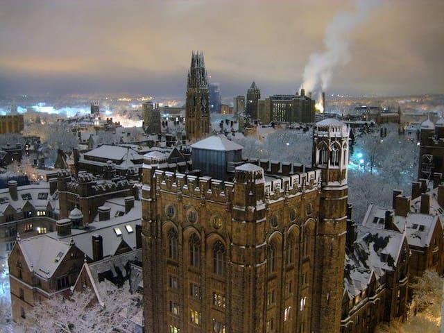 Yale Old Campus/SOM & Hospital