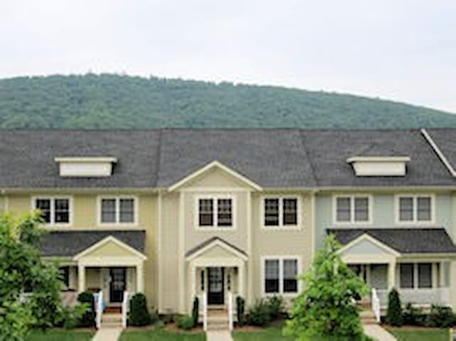 Convenient Townhouse close to Downtown Cville - Charlottesville - Daire