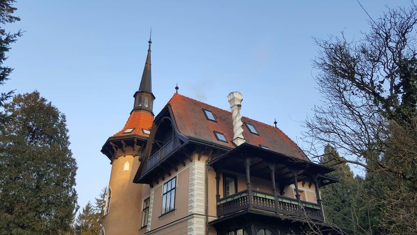 Tullnerbach-Lawies Dachgeschoss