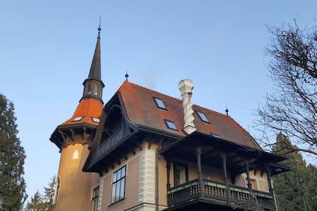 Tullnerbach-Lawies Dachgeschoss - Tullnerbach-Lawies - Lakás