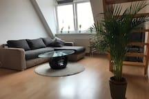 Schöne Maisonette Wohnung in Altstadtnähe