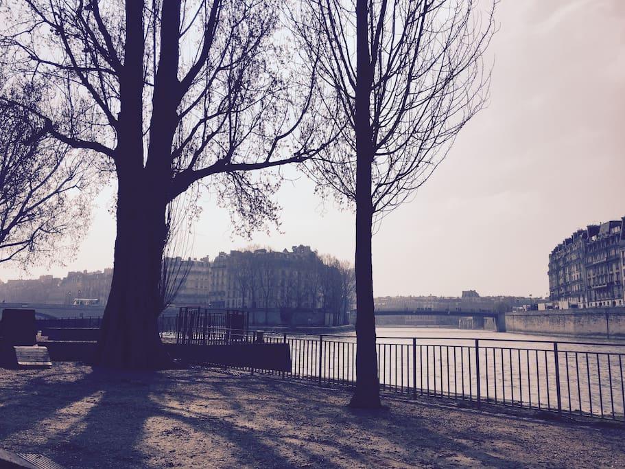Les Quais de Seine de L'Hotel De Ville : only 1 min walk from the apartment!