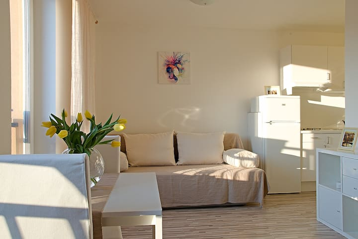 Light and cozy studio apartment - Praha - Huoneisto