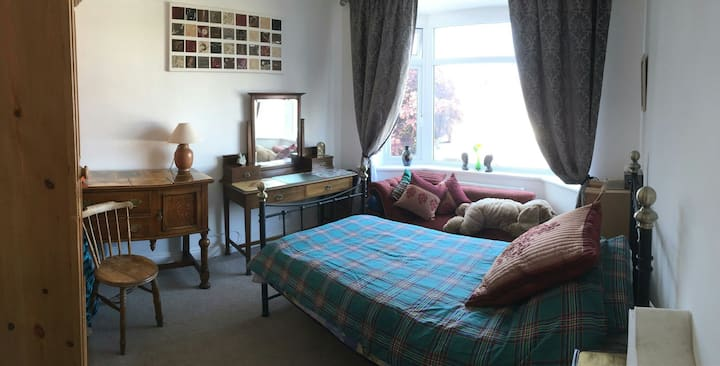 Homely Single Room