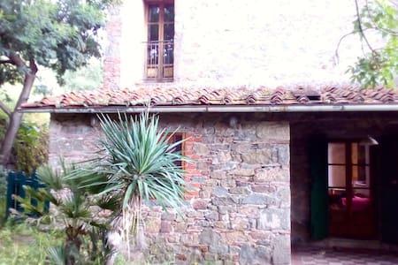 Welcome to Collodi: La Melissa - Petrognano - Leilighet