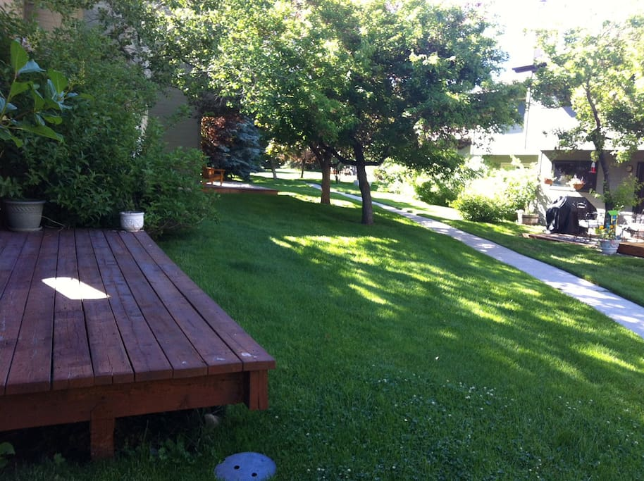 Shared greenspace in backyard