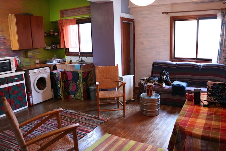 Nicosia, colorful, cosy, rustic . Good Wi-Fi . - Nicosia - Appartement