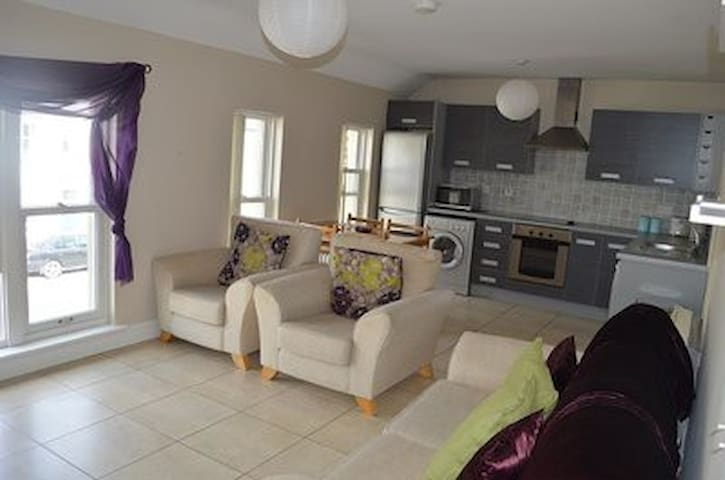 Altamount St.,Westport, Co Mayo Sunny patio area. - Westport - Apartamento