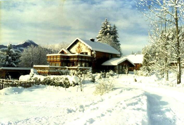 Ferienhaus Windvogel Alleinlage 2 Häuser mit Sauna