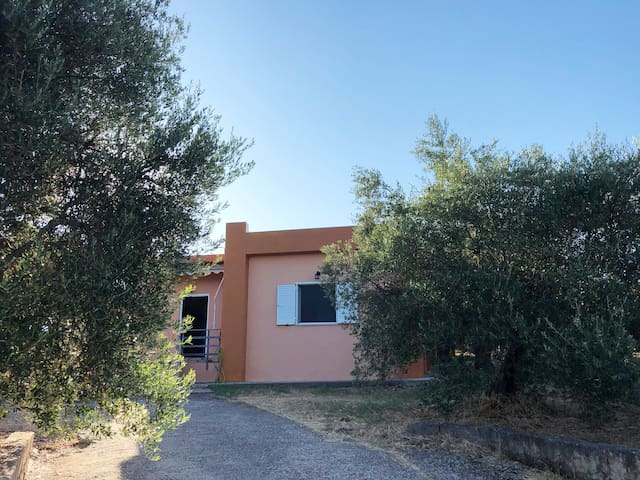 The Olive Grove House