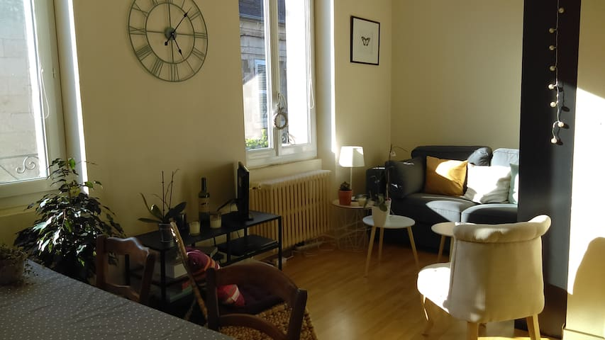 Appartement en centre ville - Poitiers - Apartment