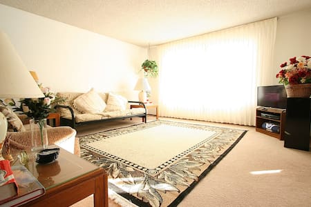 Sunny  (~ 700 sq ft) 1-BR Apartment