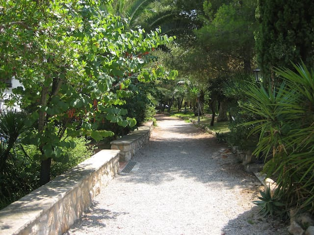Jardines interior complejo