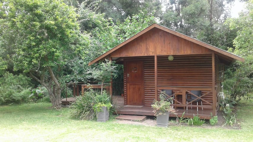 Underwood Cabin at 30 Formosa .