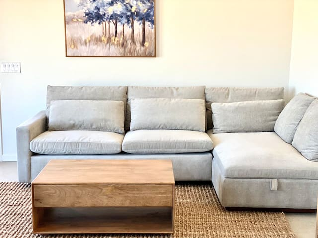 Living Room - brand new west elm queen size sofa bed and coffee table.