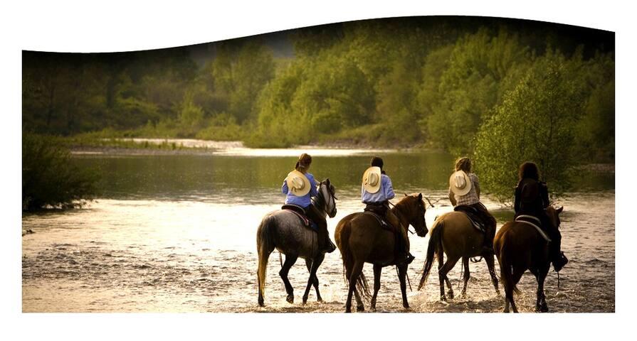 Passeggiate a cavallo al fiume
