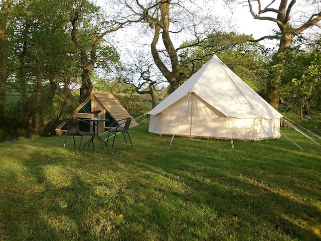 Bell tent surrounded by woods and stream