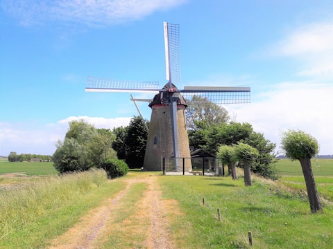 Holiday mill in Zeeland