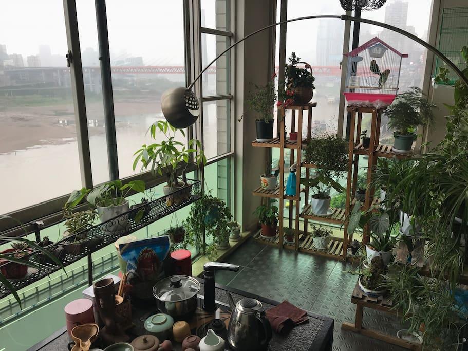 全江景茶台