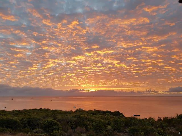 Bottlebird  - extraordinary sea views & beachside